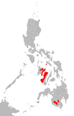 Hiligaynon translators and interpreters